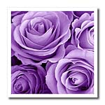 click on Soft lilac purple poses bouquet  to enlarge!