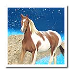 click on Paint Horse to enlarge!