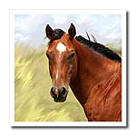click on Paint Horse Portrait to enlarge!