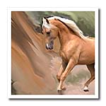 click on Palomino horse to enlarge!