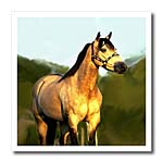 click on Quarter Horse to enlarge!