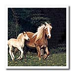 click on Palomino Pony to enlarge!