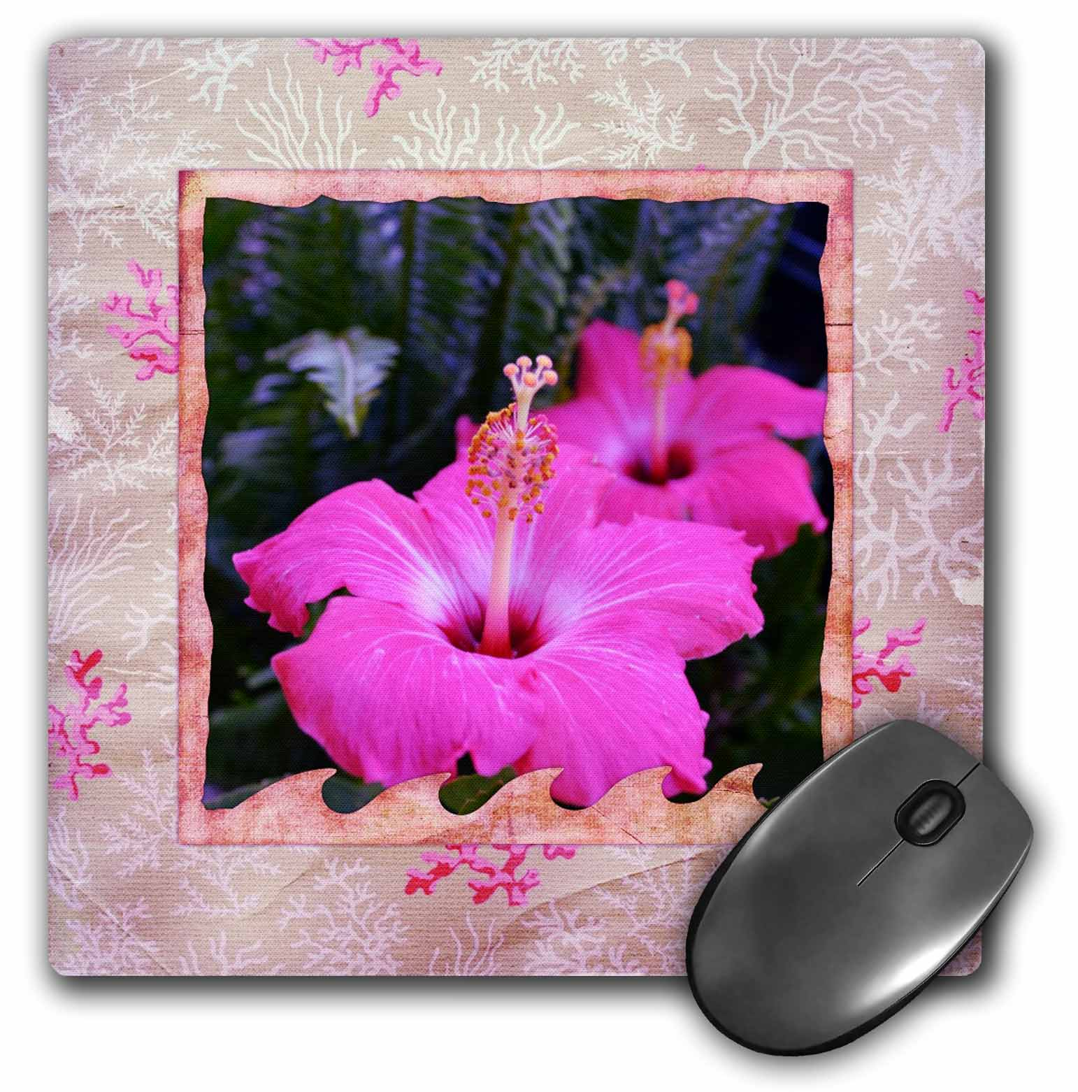 3dRose - Patricia Sanders Flowers - Delicate Pink Frame Hibiscus Flowers- Hawaiian- Photography - Mouse Pads at Sears.com