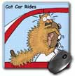 click on Cat Car Rides to enlarge!