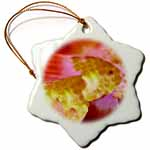 click on Surreal swimming gold fish on an orange and pink background to enlarge!