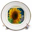 click on Framed Giant Sunflower to enlarge!
