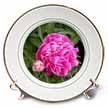 click on Hot Pink Peony to enlarge!
