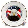 click on Bald Eagle On USA Flag and Stars to enlarge!