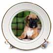 click on Brindle Boxer Puppy to enlarge!