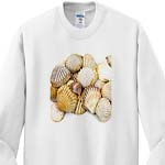 click on Sea Shells by the Sea Shore - Summer - Beach Theme to enlarge!