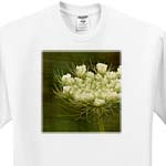 click on Queen Annes Lace by Angelandspot to enlarge!