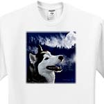 click on Blue Eyed Alaskan Husky to enlarge!