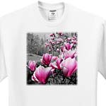 click on Spring Blossoms featuring pink flowering blossoms in a black and white picture to enlarge!