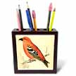 click on Beautiful Salmon Color Vintage Bird to enlarge!