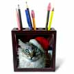 click on Christmas Cat to enlarge!