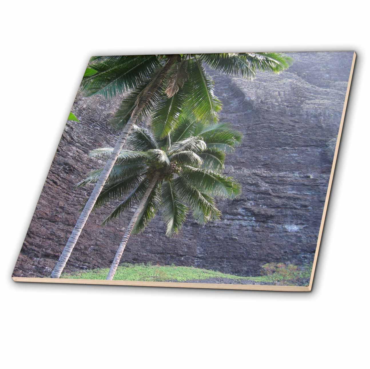 3dRose - Patricia Sanders Hawaii - Na Pali Coast Palm Trees of Hawaii - Tiles
