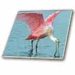 click on Upclose Roseate Spoonbill Pink Tropic Bird to enlarge!