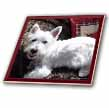 click on West Highland White Terrier to enlarge!