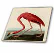 click on Vintage Pink Flamingo to enlarge!