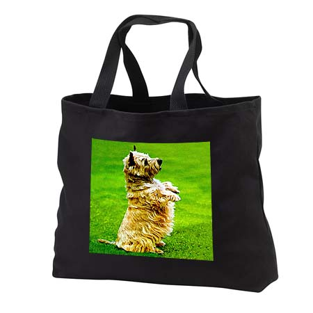 click on Cairn Terrier to enlarge!