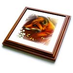 click on Red Fox and Butterflies Framed White to enlarge!
