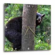 3dRose - WhiteOak Photography Bears - A Black Bear in a tree - Wall Clocks