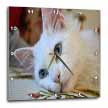 click on Relaxed Van Cat - white cat, van cat, turkish van cat, swimming cat, pedigreed cats, cat lovers, cat to enlarge!