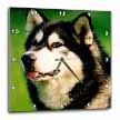 click on Alaska Malamute Dog to enlarge!
